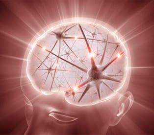 Ondas Gamma y el Poder de la Mente Humana |