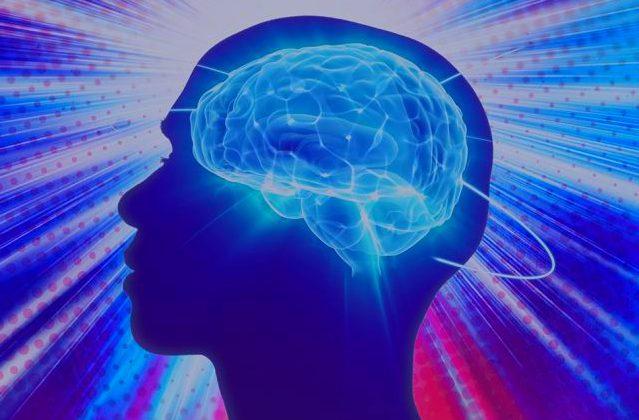 cerebro humano expandido